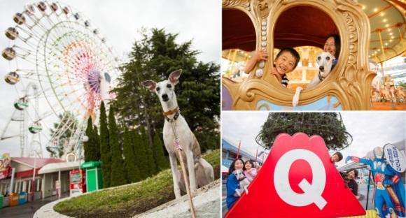 Парк развлечений Fuji-Q Highland открывает двери для владельцев собак