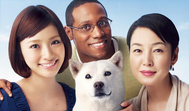 Белая собака из рекламы Soft Bank умерла в Японии