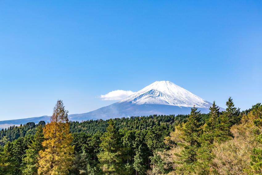 Гору Фудзи сан полностью открыли для посетителей